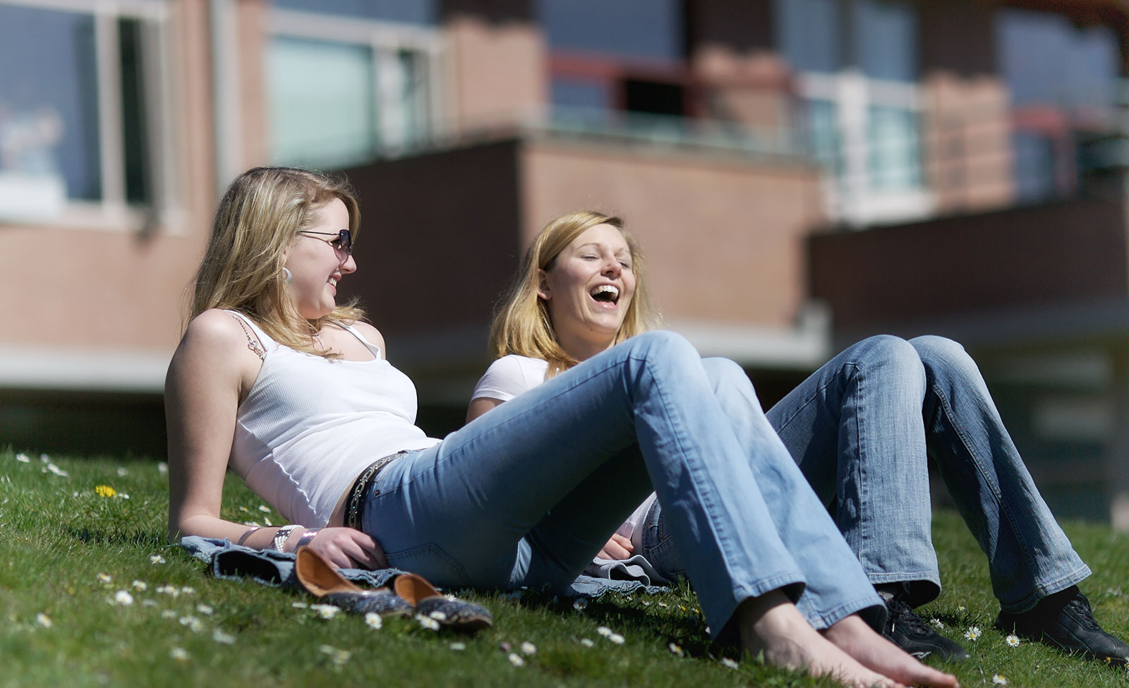 Laugh with a friend on the south lawn at GISS